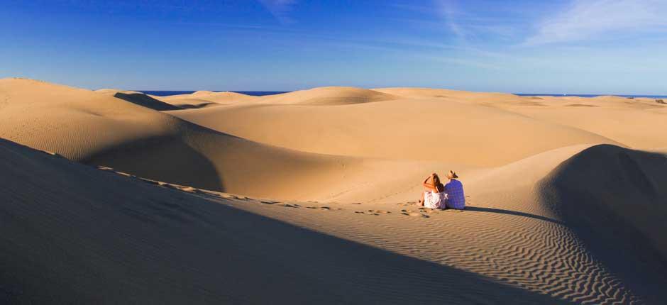 экск 2 дюны